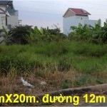 Bán đất nền Sổ Hồng Riêng dự án Phú Nhuận Quận 12, phường Thới An